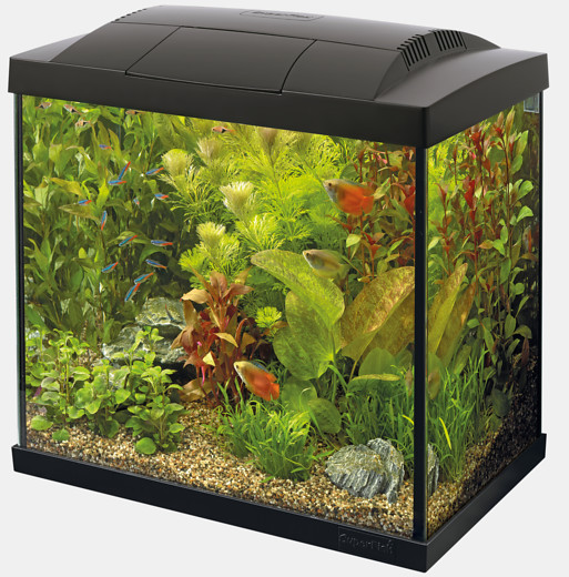 Nano Aquarium Superfish Start Tropical 50 Kit schwarz