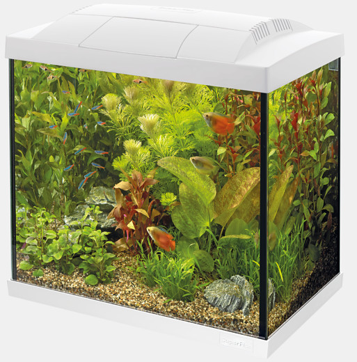 Nano Aquarium Superfish Start Tropical 50 Kit weiss